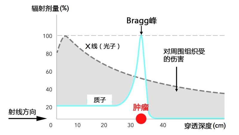bragg_peak 中文 .png