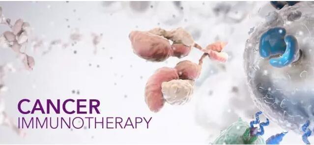 癌症免疫疗法大盘点.jpg