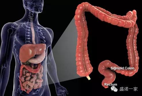 你还敢忽视拉肚子?4种癌症偏爱长期腹泻的人!.webp.jpg