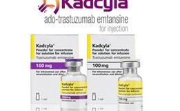 Ado-Trastuzumab Emtansine(T-DM1)