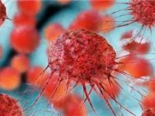 轩彩平台:首创新药ONC201,治疗血癌的