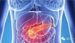 海外医疗 胰腺癌对关键蛋白的依赖可能会提供新的药物靶点