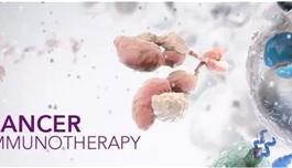 海外医疗纽约时报:癌症免疫疗法大盘点(一)