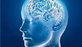 出国看病 脑瘤患者只能全脑放疗吗?
