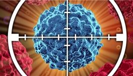 肿瘤之殇:国内癌症患者为什么买不起正规靶向药?