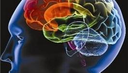 出国看病 英国科学家发现潜在的脑肿瘤药物靶点