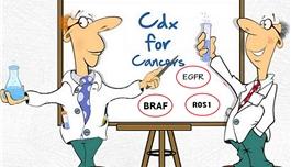 海外医疗 FDA批准多生物标志物的NGS伴随诊断,靶向4种抗癌药
