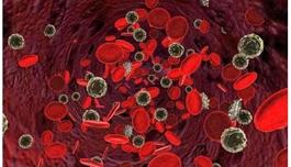 """出国就医关注:""""滴血测癌""""不严谨,海外医疗英国科学家有新成果"""