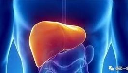海外医疗 脂肪肝没有症状也要看医生?做好这件事很重要