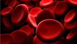 海外医疗曾撤市的抗白血病药物,获FDA批准重新上市