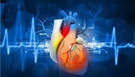 纽约时报:这个心脏病风险因素,很多医生都不知道
