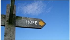 MD安德森癌症中心为何成为轩彩平台的优选之地?
