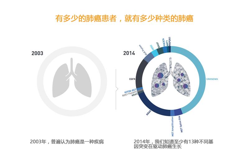肺癌驱动基因 中文.png