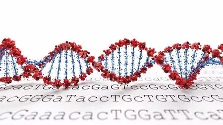 超级百岁老人的基因里,真的有长寿密码么?.webp (6).jpg