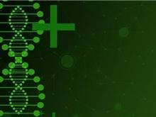 双药治疗HER2扩增肠癌,有效率达48%
