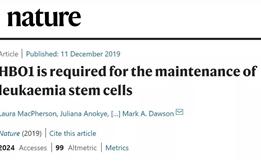 Nature:靶向干细胞,或将从根源上治愈白血病