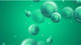 新型药物助攻PD-1免疫治疗,有望为肺癌患者带来新疗法