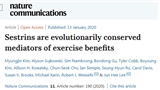 Nature子刊:想要不运动也能锻炼身体?看Sestrin如何为你的代谢添砖加瓦