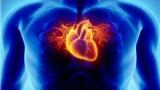 注意!这11件事可能让你患上心脏病