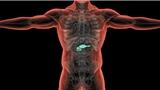 胰腺癌治疗加入这种药,肿瘤显著缩小效率是传统化疗2倍!