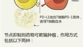 出国看病 肺癌患者福音:又有新的免疫疗法了!