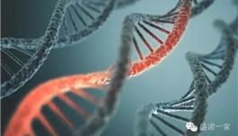 出国看病 关节炎药物Auranofin有望治疗卵巢癌