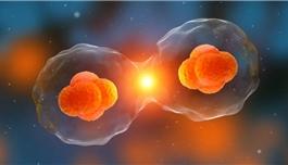 医学前沿:癌症转移灶减少99%!这种上市多年的药物竟有抗癌效果