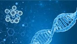 三药联合降低结直肠癌患者48%的死亡率!