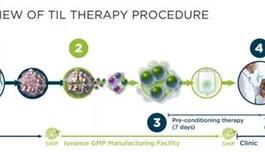 突破性疗法认定!新型细胞疗法有望治疗更多癌症!