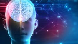世界上较大的迷幻药物与意识研究中心 在约翰.霍普金斯成立!