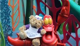世界罕见病日 关注罕见病儿童,赠送英国GOSH慈善小熊Wendy!